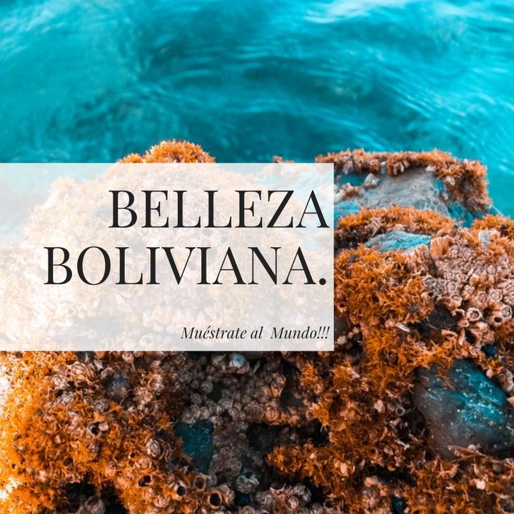 belleza bolibiana